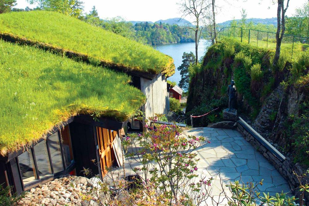 Дом с травяной крышей